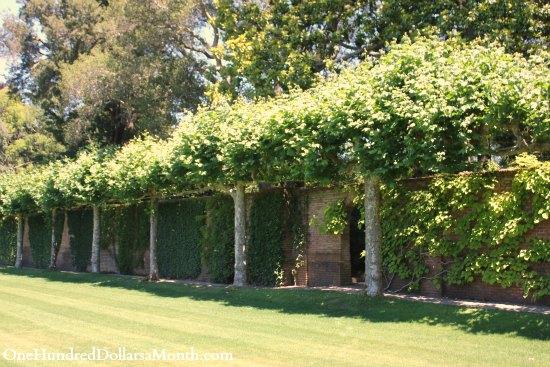 filoli garden tour