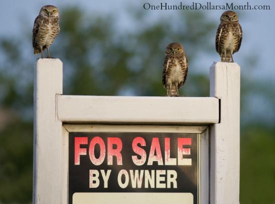 how to sell your own home for sale by owner
