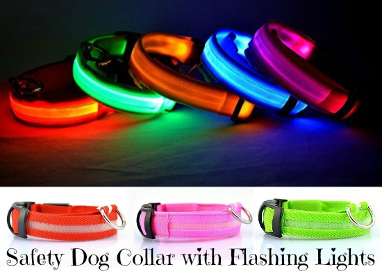 Safety Dog Collar with Flashing Lights