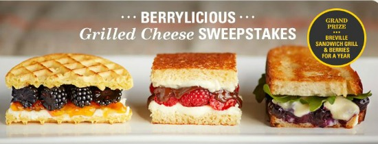 driscolls berry contest
