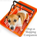 Dogs as Shopping Companions: Where Should We Draw the Line?