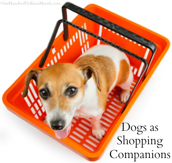 Dogs as Shopping Companions Where Should we Draw the Line