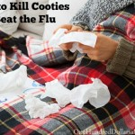 It's Officially Flu Season – How to Kill Cooties and Beat the Flu