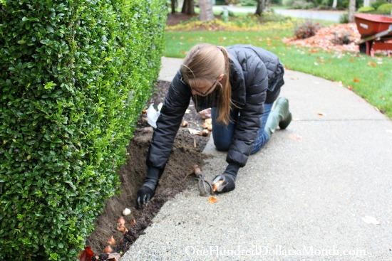 mavis garden blog