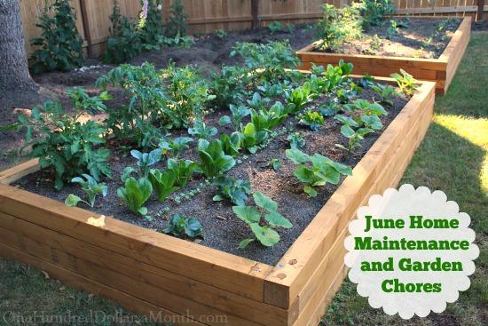 June Home Maintenance and Garden Chores