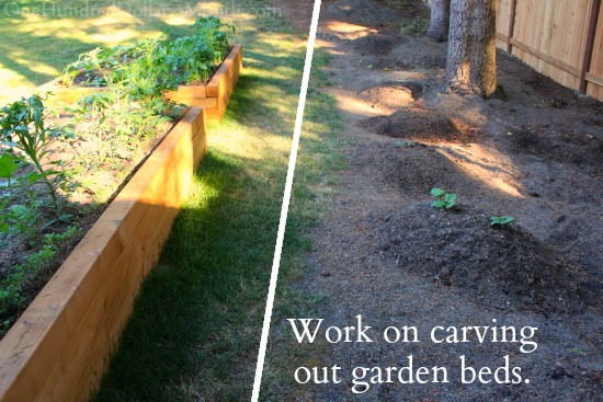 carving out garden beds