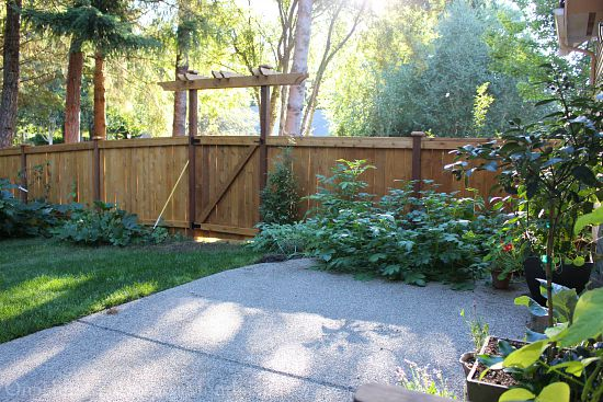 cedar fence with trellis over gate