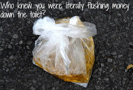 bag of urine