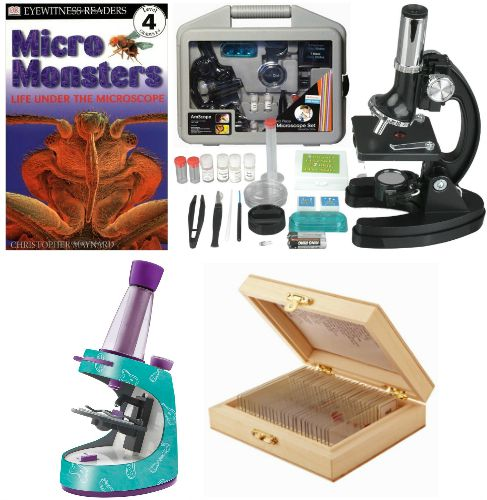 microscope for kids