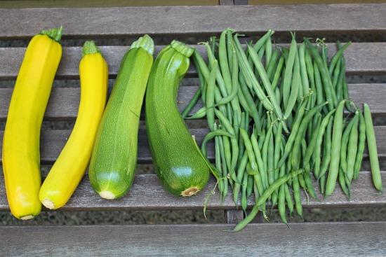 zucchini beans