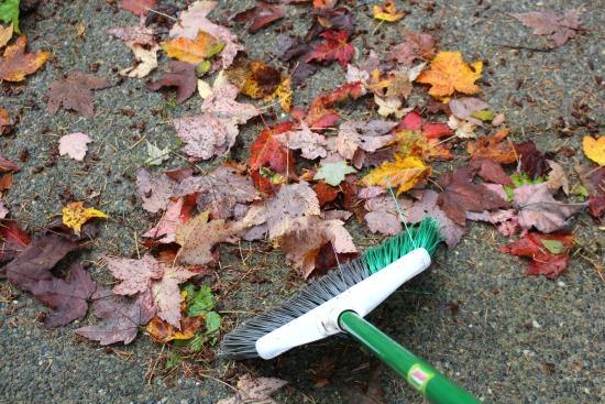 sweeping-broom-fall-leaves
