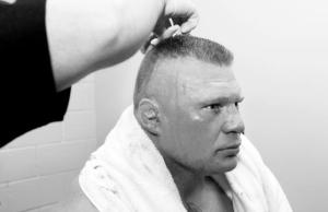 Brock with stitches