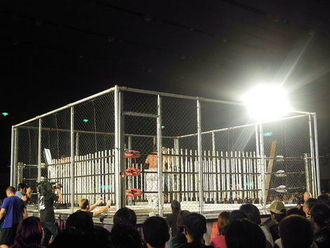 Steel cage 2