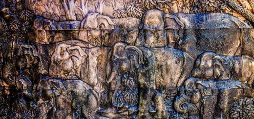 Man Made Texture Photography Laos Elephants Photo Ooaworld