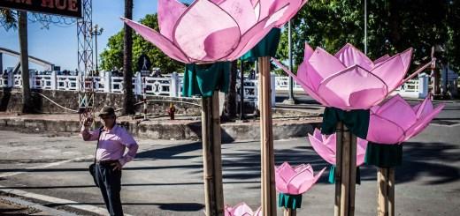 Pink Lotus Hue Imperial City Vietnam Photos Ooaworld