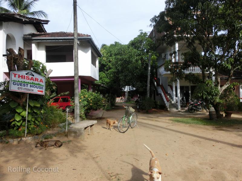 Thisara Guest House Polonnaruwa Sri Lanka ooaworld Rolling Coconut Photo Ooaworld