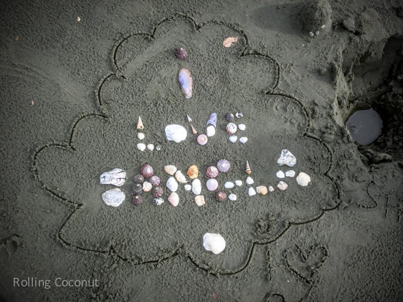 Bangladesh Cox Bazar I love Blangla Shells Beach ooaworld Rolling Coconut Photo Ooaworld