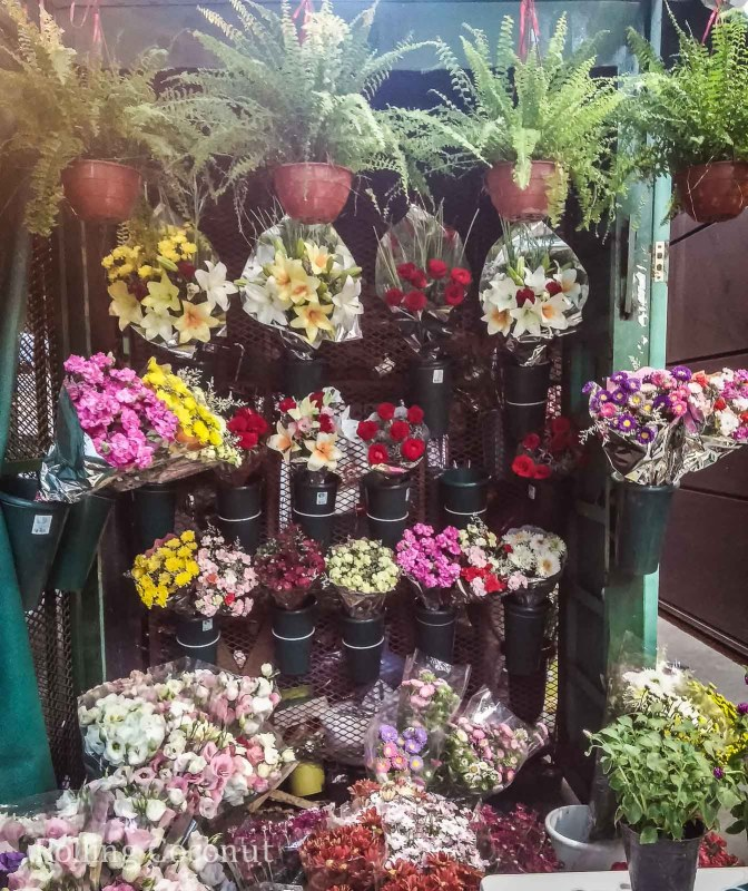 Argentina Buenos Aires Flower Shops from All Over the City Rolling Coconut OOAworld Photo Ooaworld
