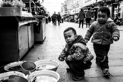 china stare down squat photo ooaworld