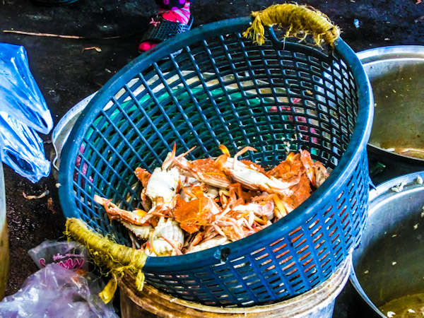 Kampot crab Cambodia photo ooaworld Rolling Coconut
