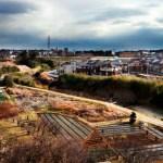 view of fields from Shinkansen,