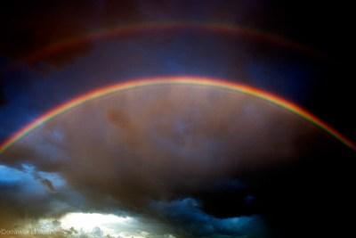 Photos Montana Wyoming Double Rainbow 180, Buffalo
