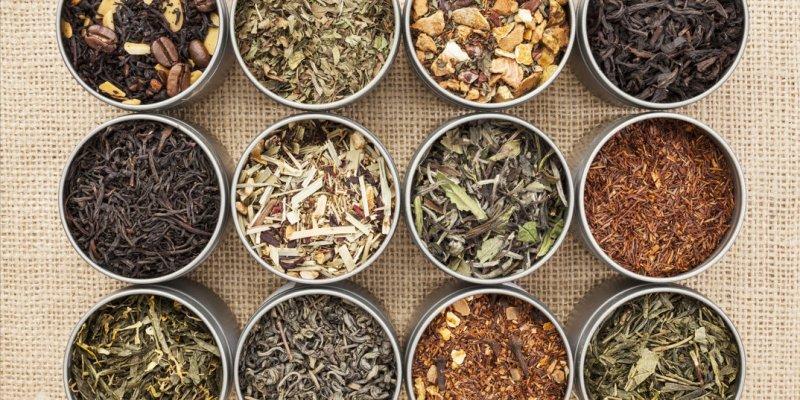 principais-plantas-medicinais
