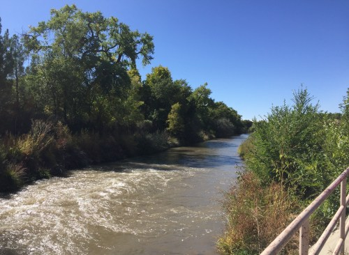 Rio Grande River in ABQ, NM