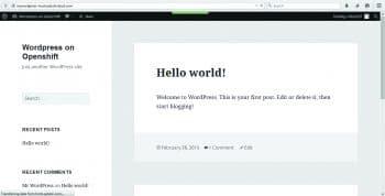 Figure 7: WordPress Site