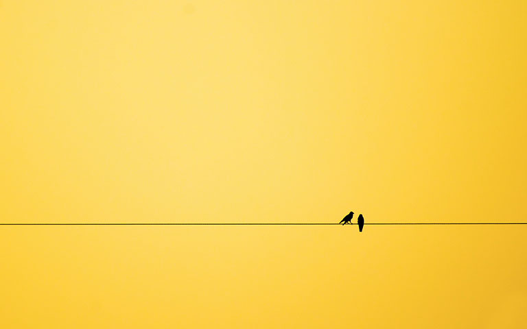 Minimalism: The Key to Everything You Want in Life