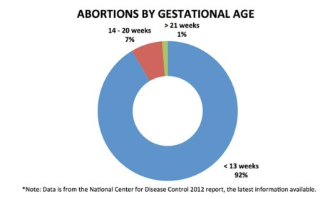 abortions in america Historical abortion statistics, united states  abortions, residents, obtained abroad includes reported abortions by country residents obtained in other countries.