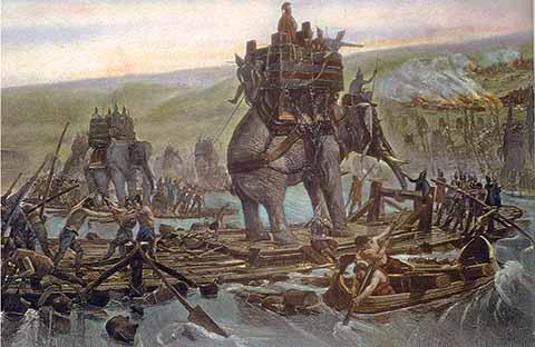 Elefanti, Renzi e il Ponte sullo Stretto