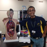 Mr. Klein posing with a model of the human body used for anatomy demonstrations.