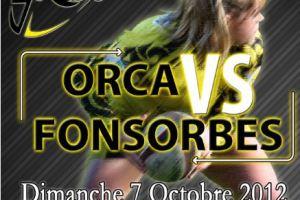 Affiche Romagnat ORCA Fonsorbes 2012 B