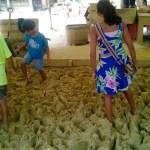 Preparing clay for bricks.