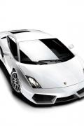 Lamborghini Gallardo Bianca sfondo