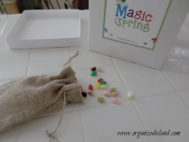 planting-a-lollipop-garden