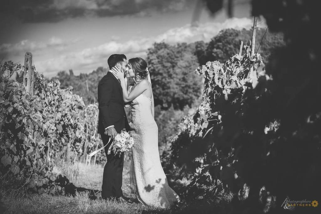 The bride kiss the groom in the vineyard