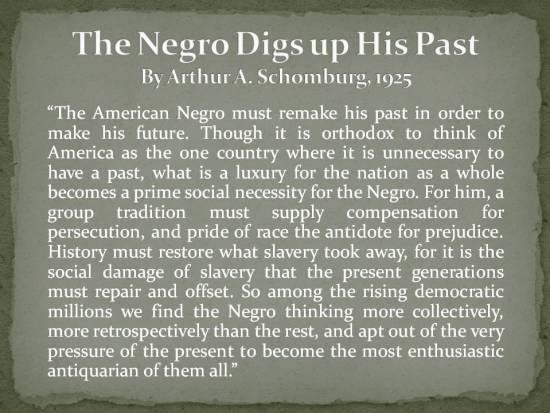The Negro Digs up His Past