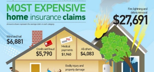 5-smartest-infographics-explaining-insurance-03