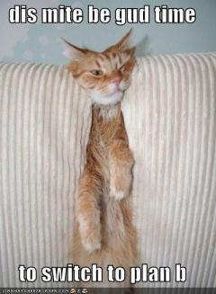 funny-pictures-cat-wishes-to-switch-to-plan-b
