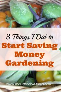 3 Things I Did to Start Saving Money with Gardening