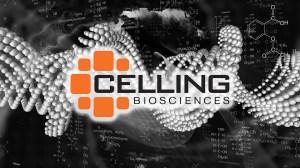 celling-slide1