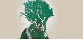 Collective Awareness and Spiritual Evolution