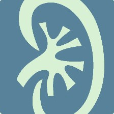 rene.nefrologia
