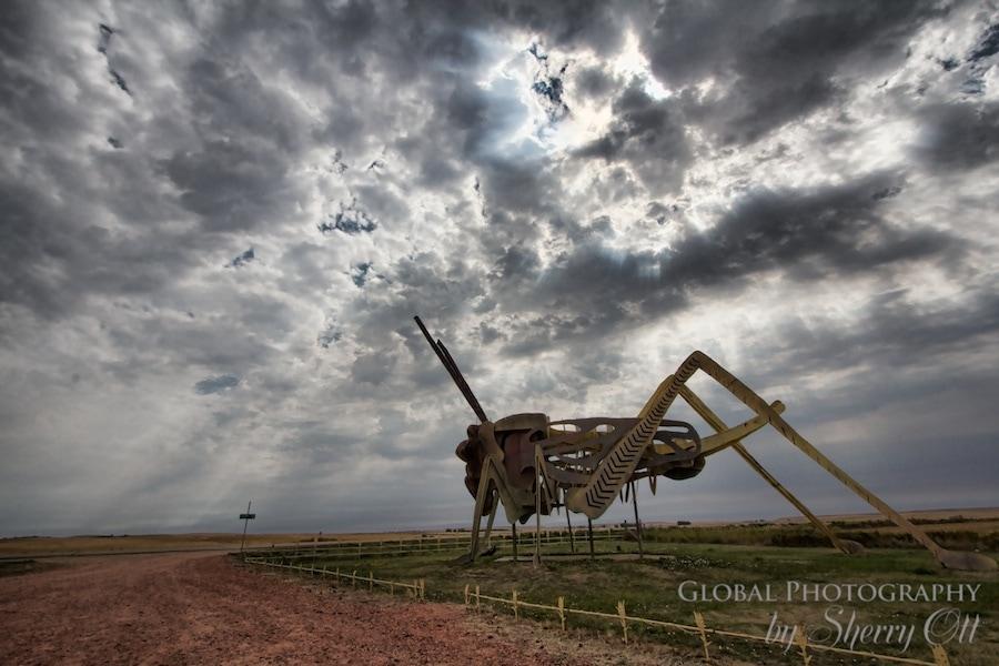 Grasshopper metal sculpture