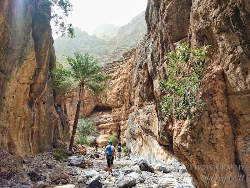 Trek Oman Bilad Sayt