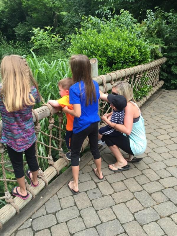 Nashville Zoo 6