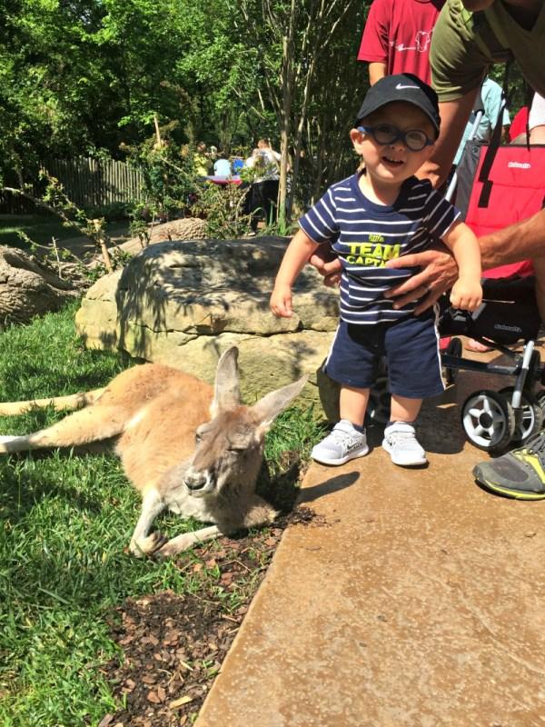 Nashville zoo 3