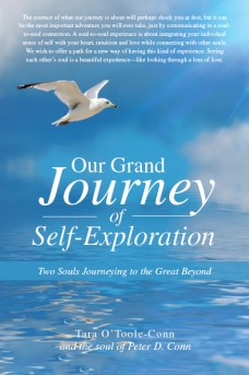 Our Grand Journey of Self-Exploration : Two Souls Journeying to the Great Beyond